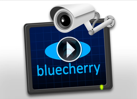 Bluecherry v2.0