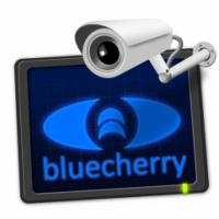 Bluecherry logo